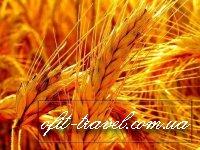 Landwirtschaftliche Reise