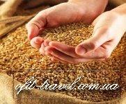Ukraine agricole