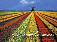 Групповые туры по Голландии