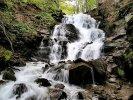 Однодневная экскурсия: Озеро Синевир И водопад Шипот