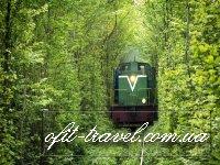 Екскурсійний тур: Тараканів, Дубно + Тунель кохання