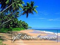 Летний отдых на острове Шри Ланка